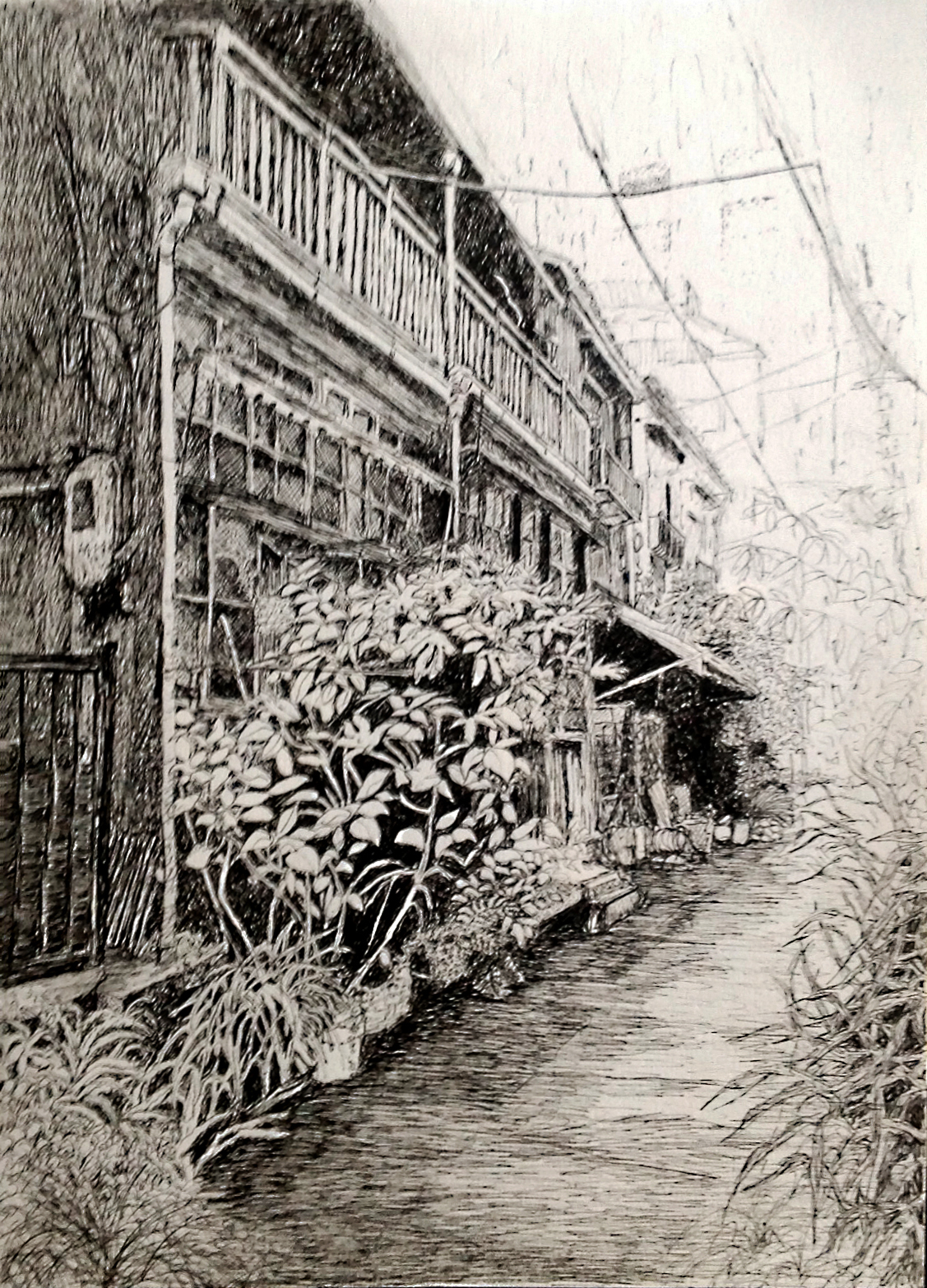 pen and ink drawing of one of the small Tokyo alleyways. The drawing concentrates on the left side, dilapidated buildings and the plants that enliven the narrow space.