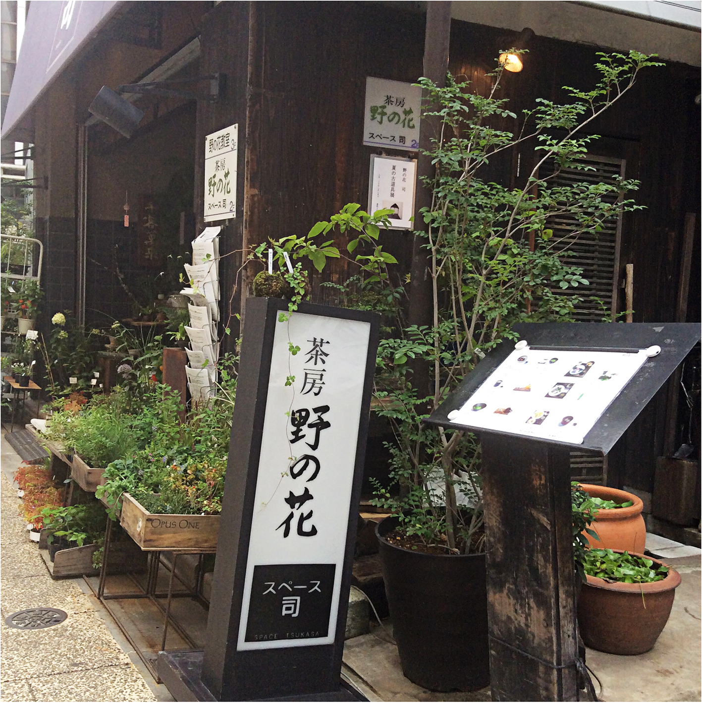 looking at a tiny wildflower shop from a small sidestreet in Ginza; small plants in wooden boxes, the shop name on a stand in black and white an various information leaflets on display.