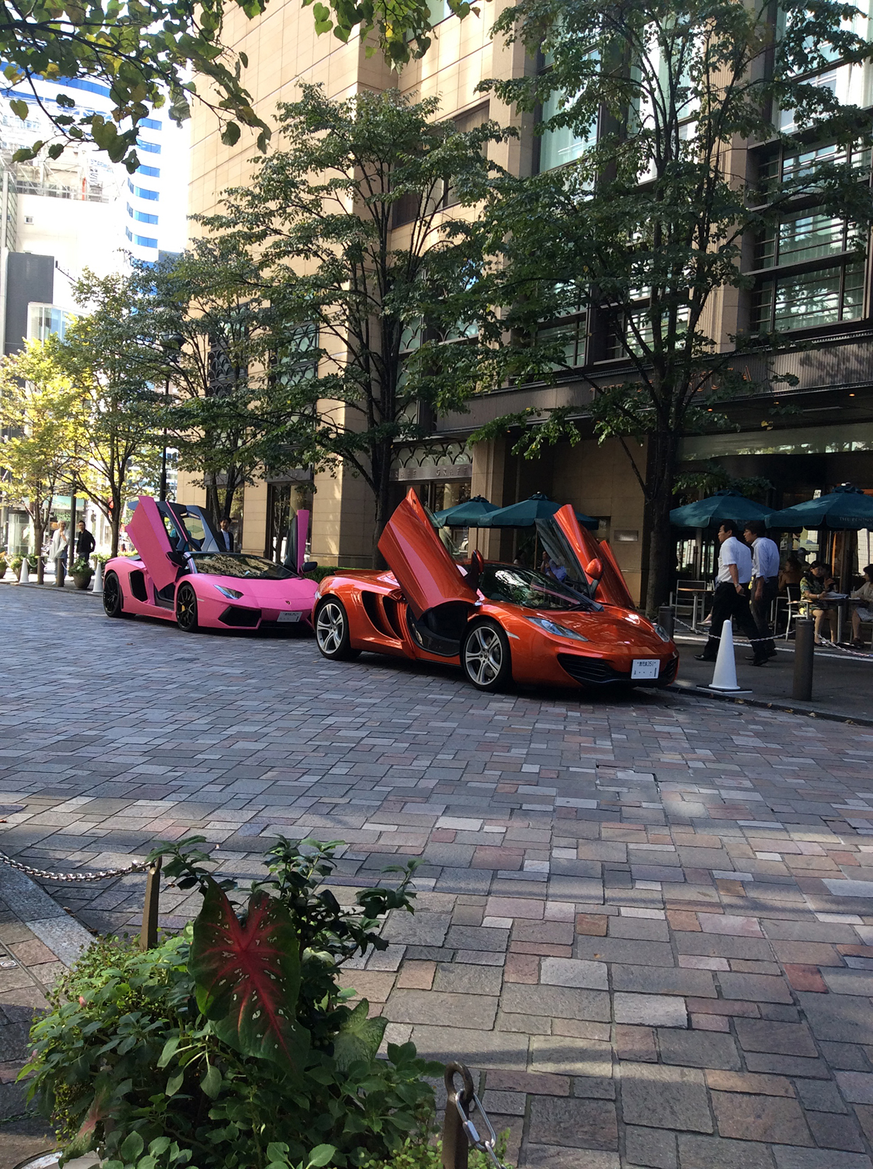 the tree lined avenue in Marunouchi, with a container of plants in the foreground and across the paved road two Lamborginis, one pink, one orange, are parked with their gull-wing doors high in the air.
