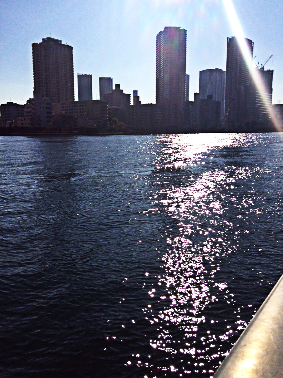 strong winter sun on choppy water that looks, by contrast, a deep diamond-black. Blue sky, tall building silhouettes and a lens flare make up the background.