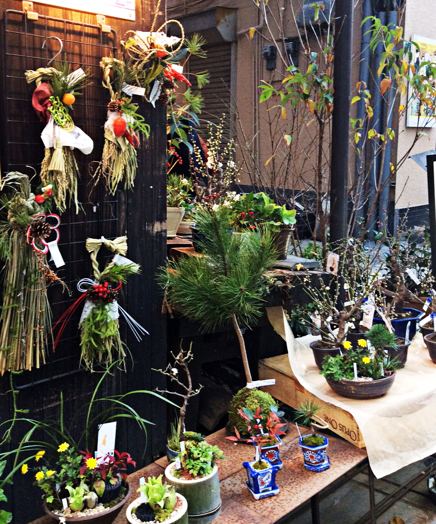 against the black wooden exterior of the shop, the plaited corn, berries and citrus fruits of New Year decorations stand out, in front of them tiny to small pots with seasonal mini-plants are displayed.