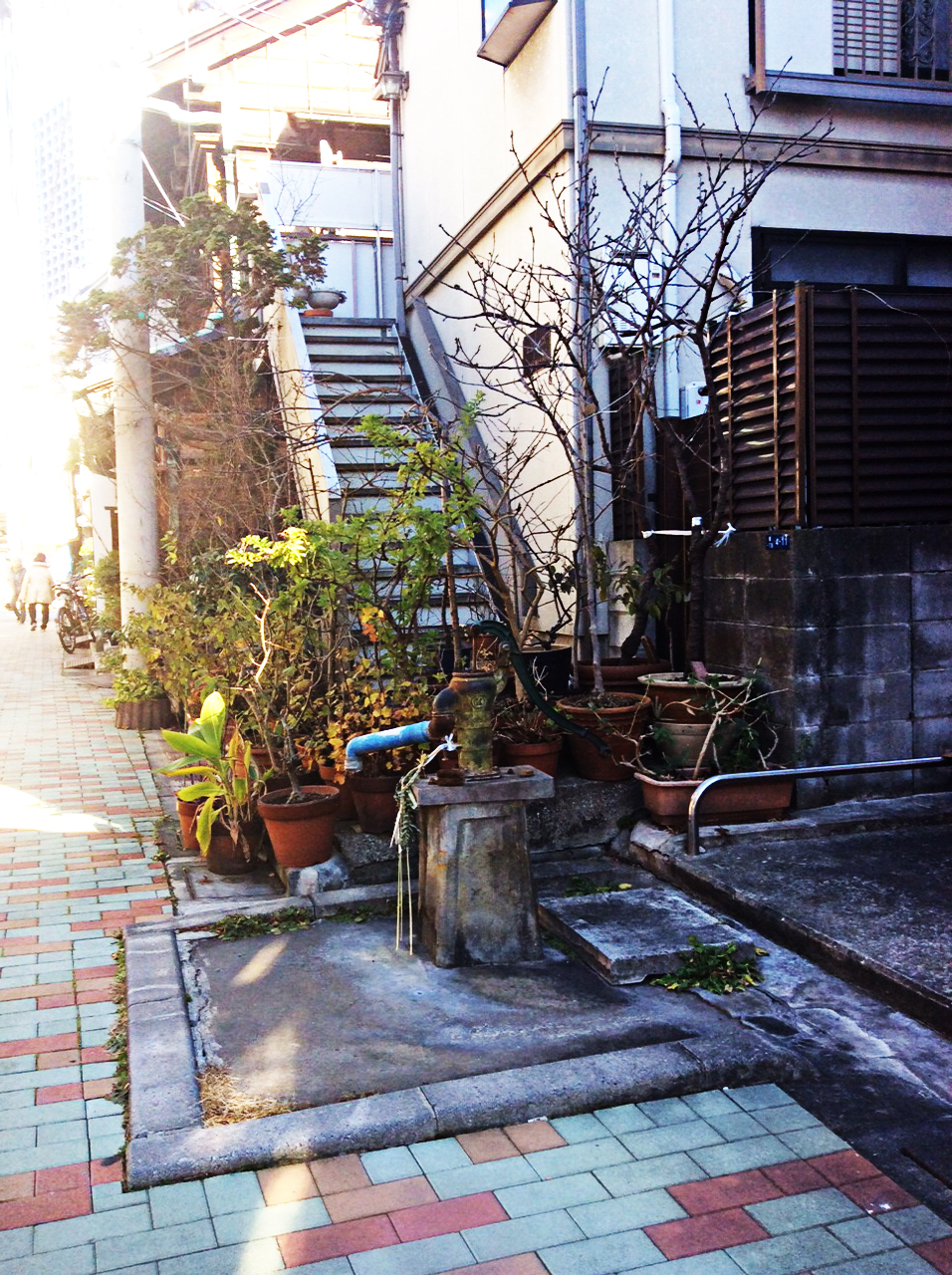 a pink and white pavement run the length of this little street, a blue water pump sits in the foreground of the image, and behind that a mass of terracotta pots with a variety of plants and shrubs. the small, rathe ramshackle, building on the right has outdoor steps to the next floor up,